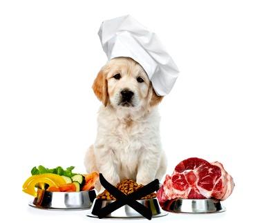 Balancing a raw puppy diet